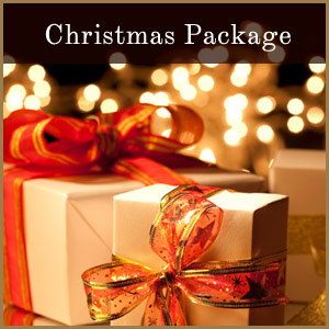 Holiday-Package-Promo-Box