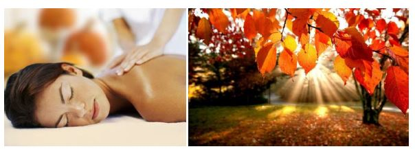 spa-features-harvest-massage